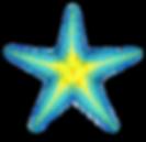 0-3323_blue-starfish-png-clip-art-star-f