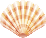 74433-clam-shellfish-seafood-shell-lobst