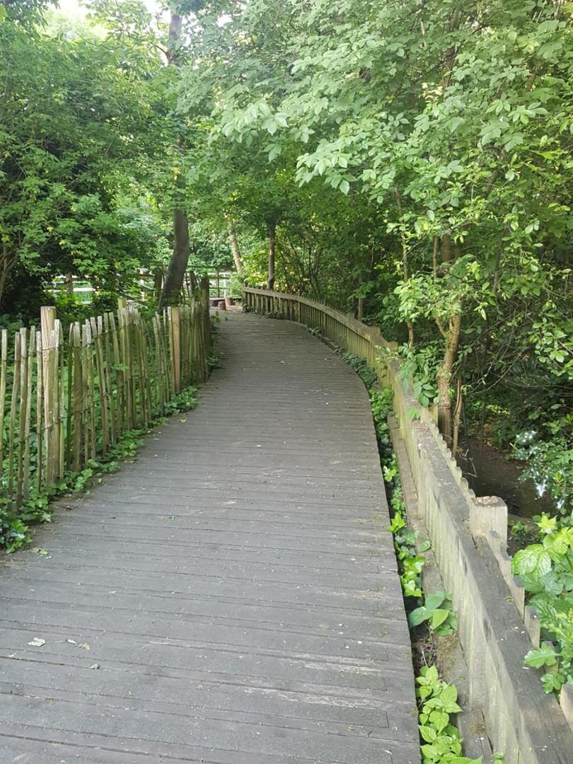 Waterlow Park Nature Reserve