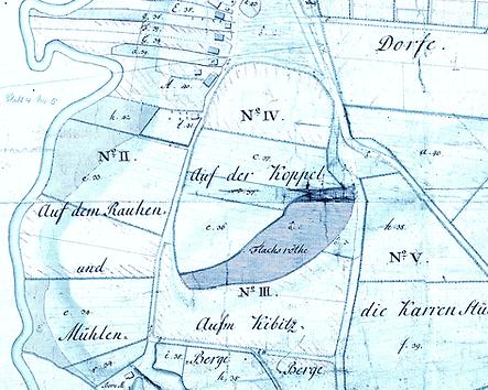 Die Flachsröthe 1789
