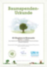 certificate-000002226787E75-1-baum.jpg
