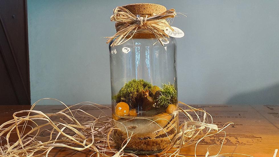 Terrário vidro de conserva 16 cm com lago artificial