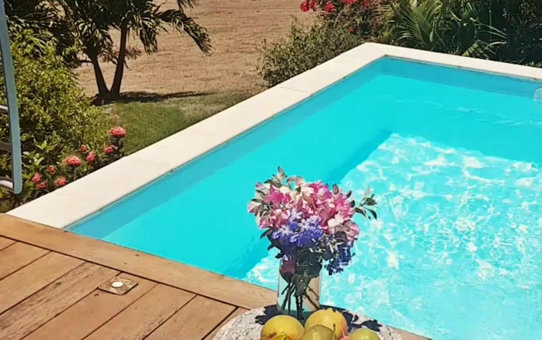 Les fruits et fleurs du jour dans la villa Blue Haven 2