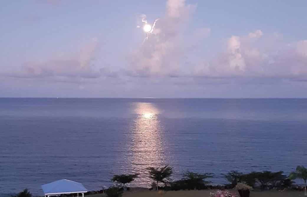 Une nouvelle lune au lever du matin