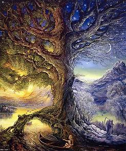 arbre web.jpg