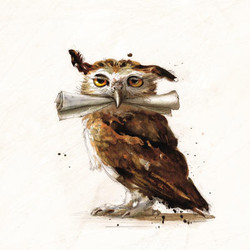 HPILLUSTRATED_B_Art_Owl
