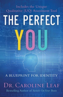 The-Perfect-You