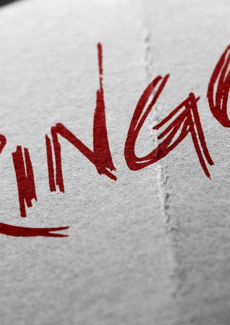 Ringo Logo MOCK.jpg