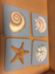 seashell class pic.JPG