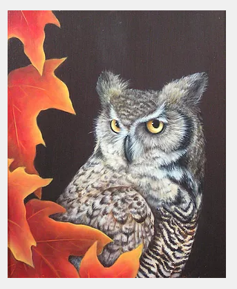 lydia steeves owl.png