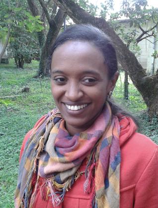 Dr. Medhanie Gebresellasie  (see photo 12.1.2)