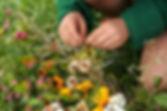 fete automne ecole steiner mens.jpg