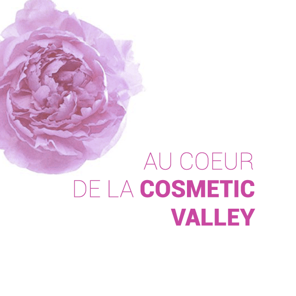 cosmeticValley2.png