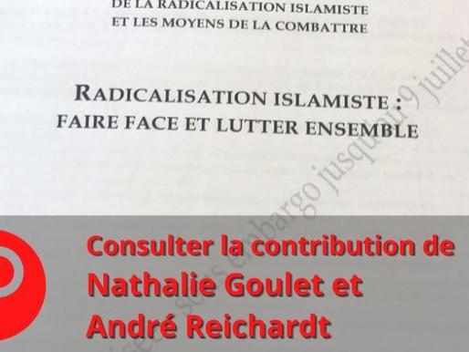 """"""" Radicalisation islamiste""""  Contribution de Mme Goulet et M Reichardt au rapport du Sénat"""