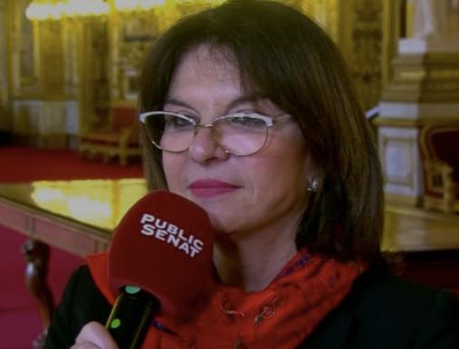 « La fraude sociale n'est pas une fraude de pauvres » estime Nathalie Goulet