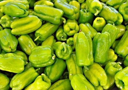 Petits poivrons verts marseillais