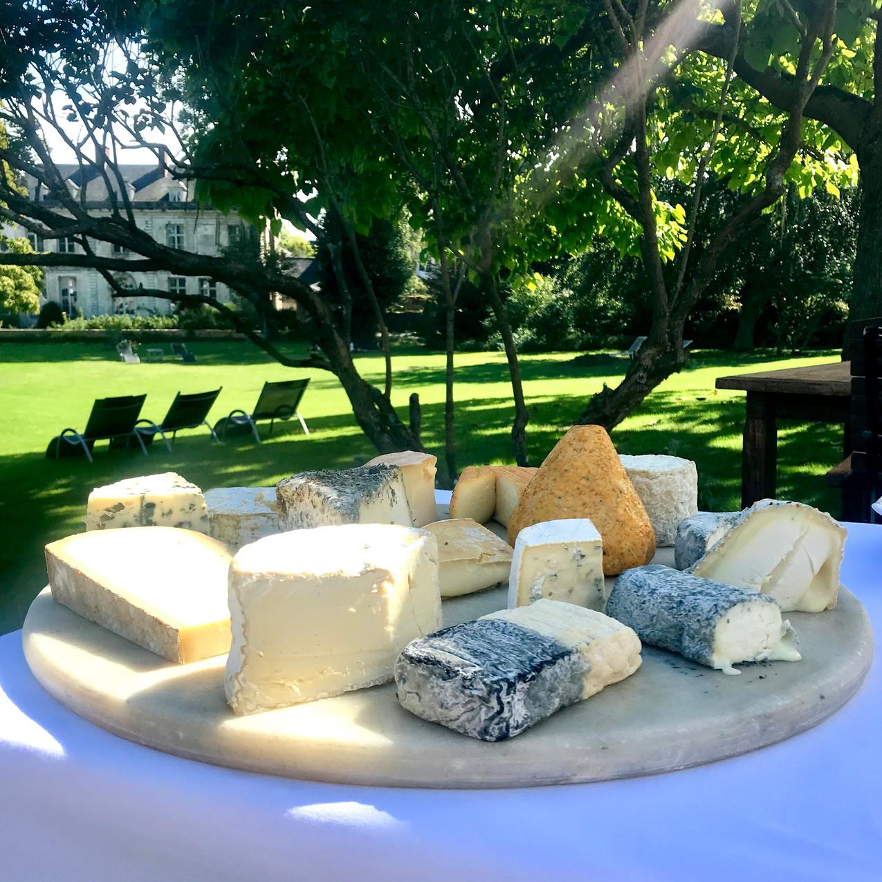 Magnifique plateau de fromages