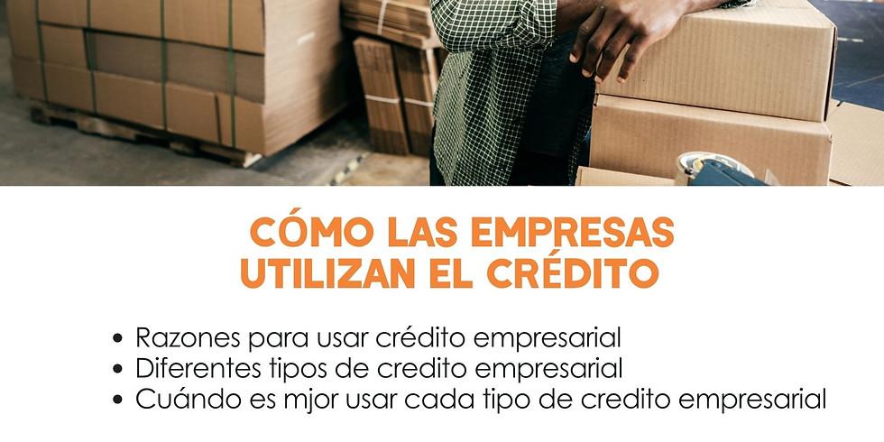 Cómo las Empresas Usan el Crédito