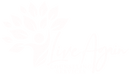 Live Again LLC white logo.png