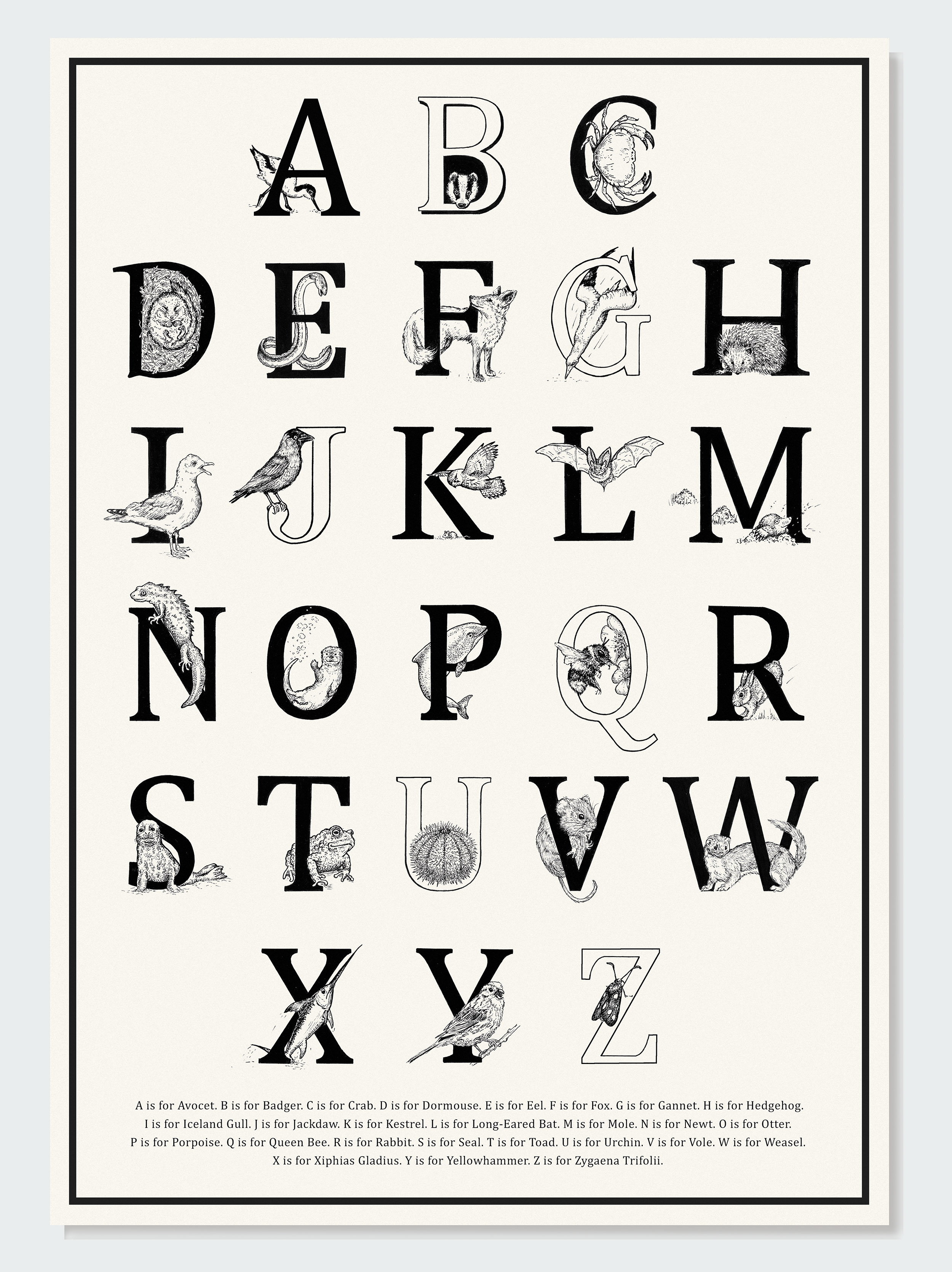 A-Z British Animals Poster