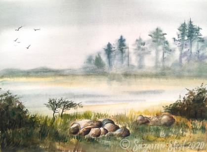Misty Morning at Ona Beach State Park