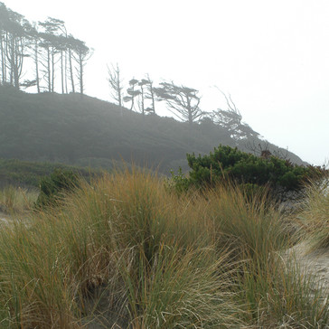 Ona Beach State Park