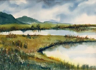 Wetlands Drama
