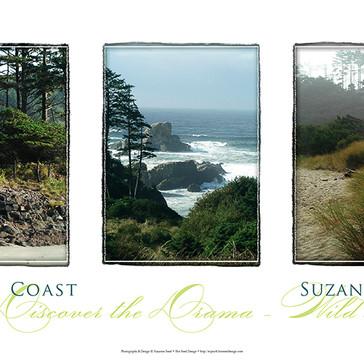 Oregon Coast Triptych Poster