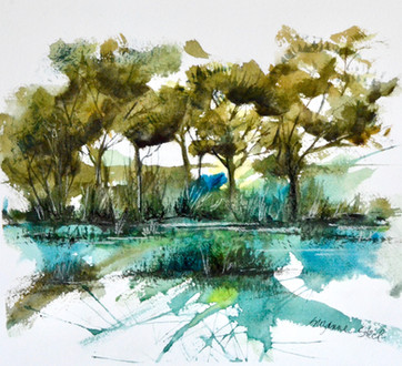 Marsh Mystique