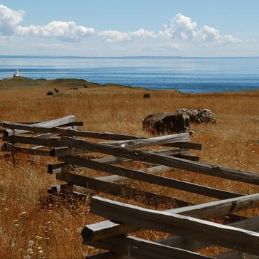 Cattle Point, San Juan Island