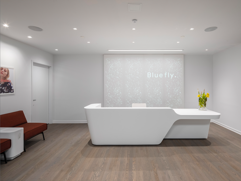 BLUEFLY CORPORATE OFFICE