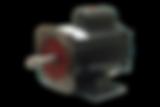 Motor Elétrico para Motobombas