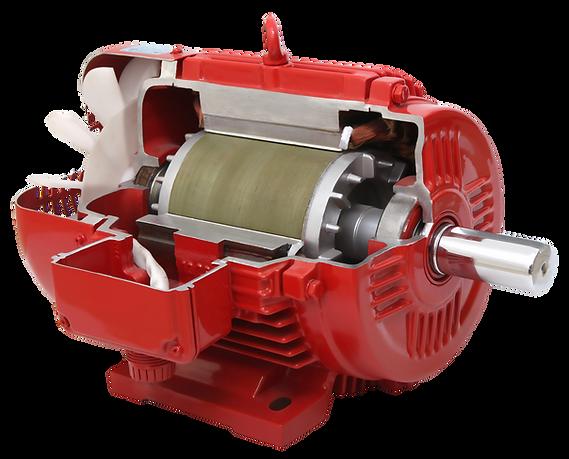 Motor IP56 Nova Motores