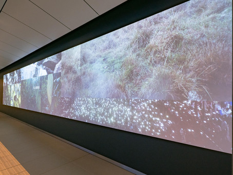 アピチャッポン・ウィーラセタクン《憧れの地》展示写真:札幌文化芸術交流センター SCARTS「西2丁目地下歩道映像制作プロジェクト」