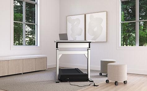 Nevins Treadmill Desk.jpg