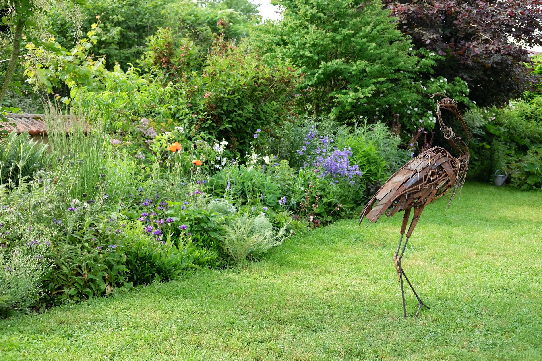 jardin de TEM - Frantz