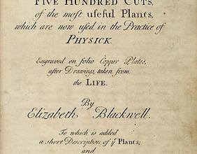 curious herbal.jpg