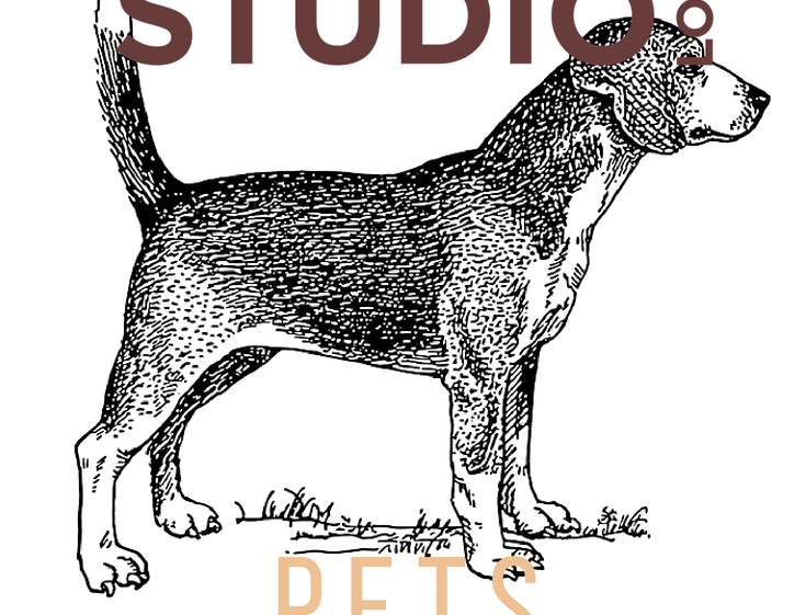 Pets & Pencils Art Workshop