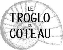 logo_ammonite.png