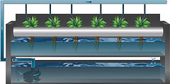 T Series moving large amounts of water for a hydroponic application