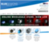BLUEDIAMOND PUMPS INC website
