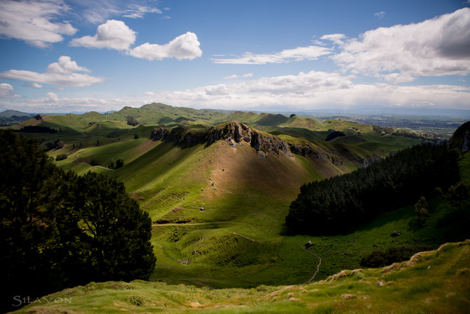 Te Mata Peak am Tag