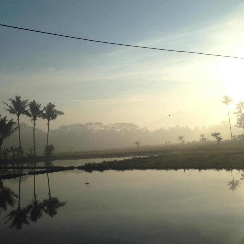 En route to Borobudur