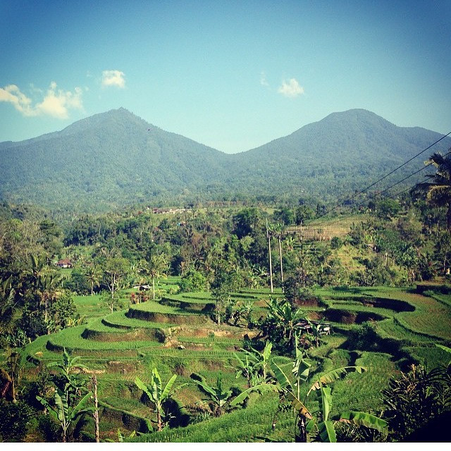 View of Bali's luscious, green hills