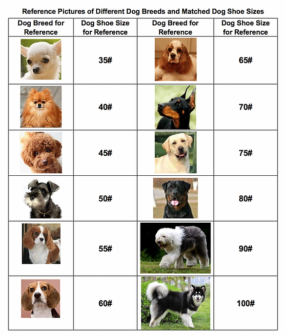 Shoe size of dog breeds - reference.png