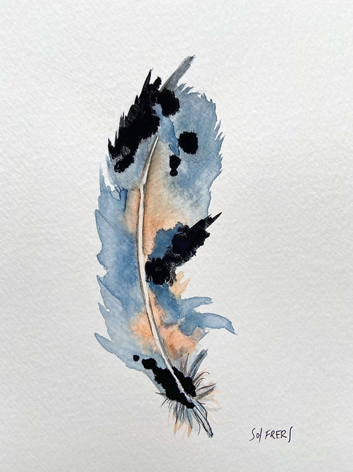 Feather Indigo
