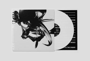 Album cover for Skeleton Key