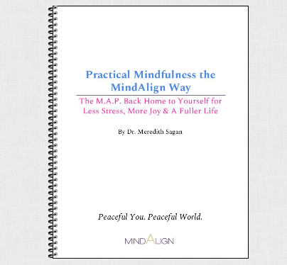 Practical Mindfulness the MindAlign Way
