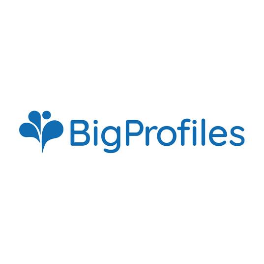 bigprofiles.jpg