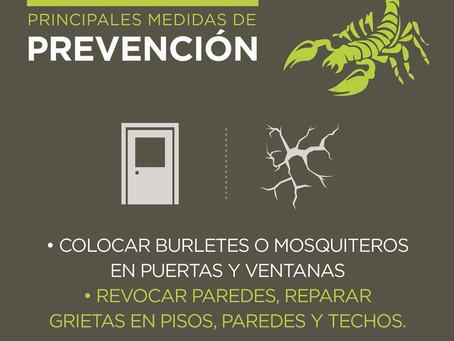 Prevención contra alacranes